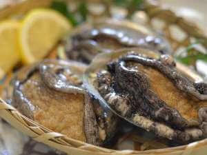 【選べる鮑プラン】お造り・蒸し・焼きの3種からおひとりずつ選べて嬉しい!ワンランク上の料理に舌鼓